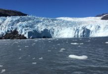Alaska Dream Vacation | Glacier Tours | Kenai Fjords