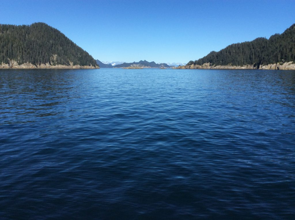 Alaska Dream Vacation | Glacier Cruising